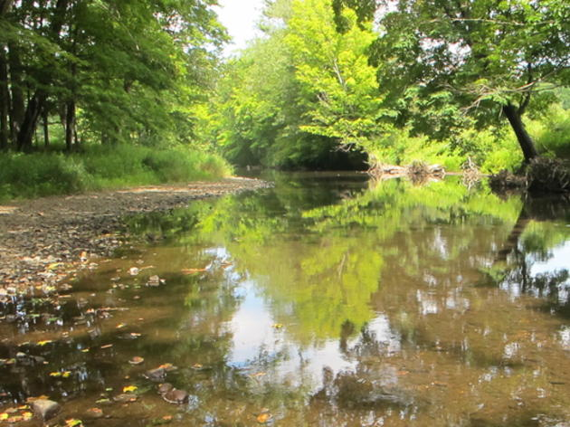 Improving the Habitat of the Pomperaug River